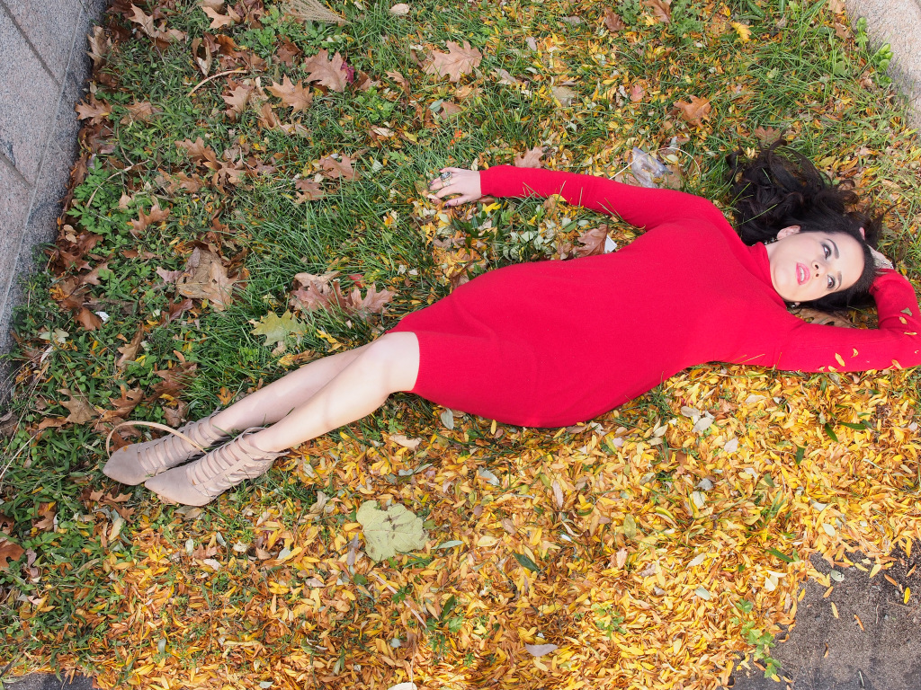 Soul Searcher: Carpet of Fallen Leaves