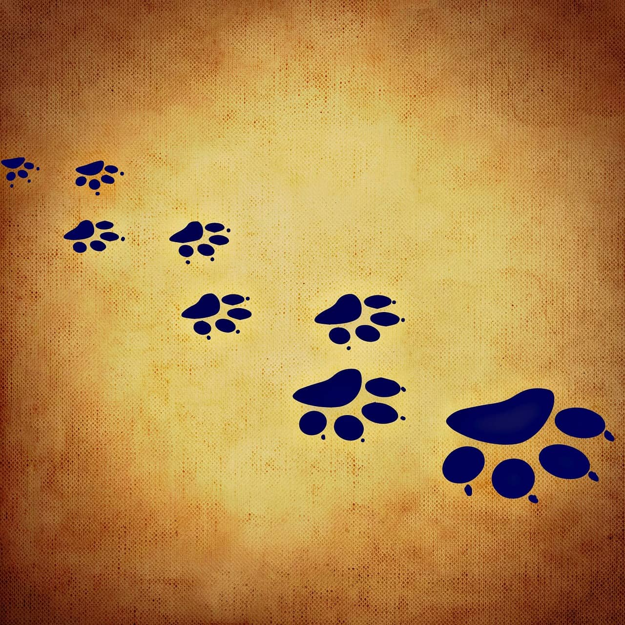 A Global Community in Finding Responsible Dog and Cat Breeders