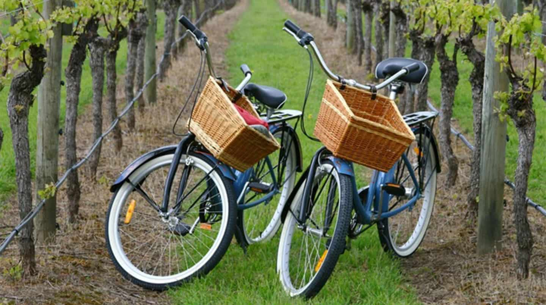 East End Bike Tour