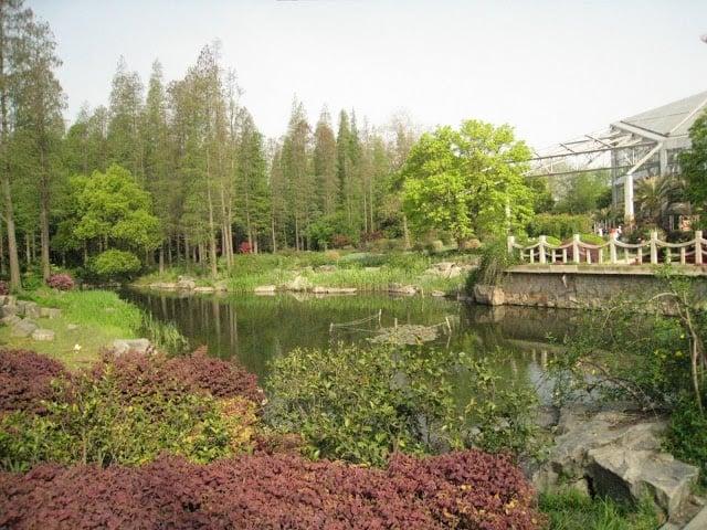 shanghai-garden-14
