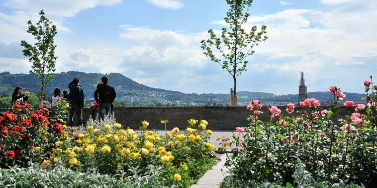 rosengarten_Bern_Switzerland