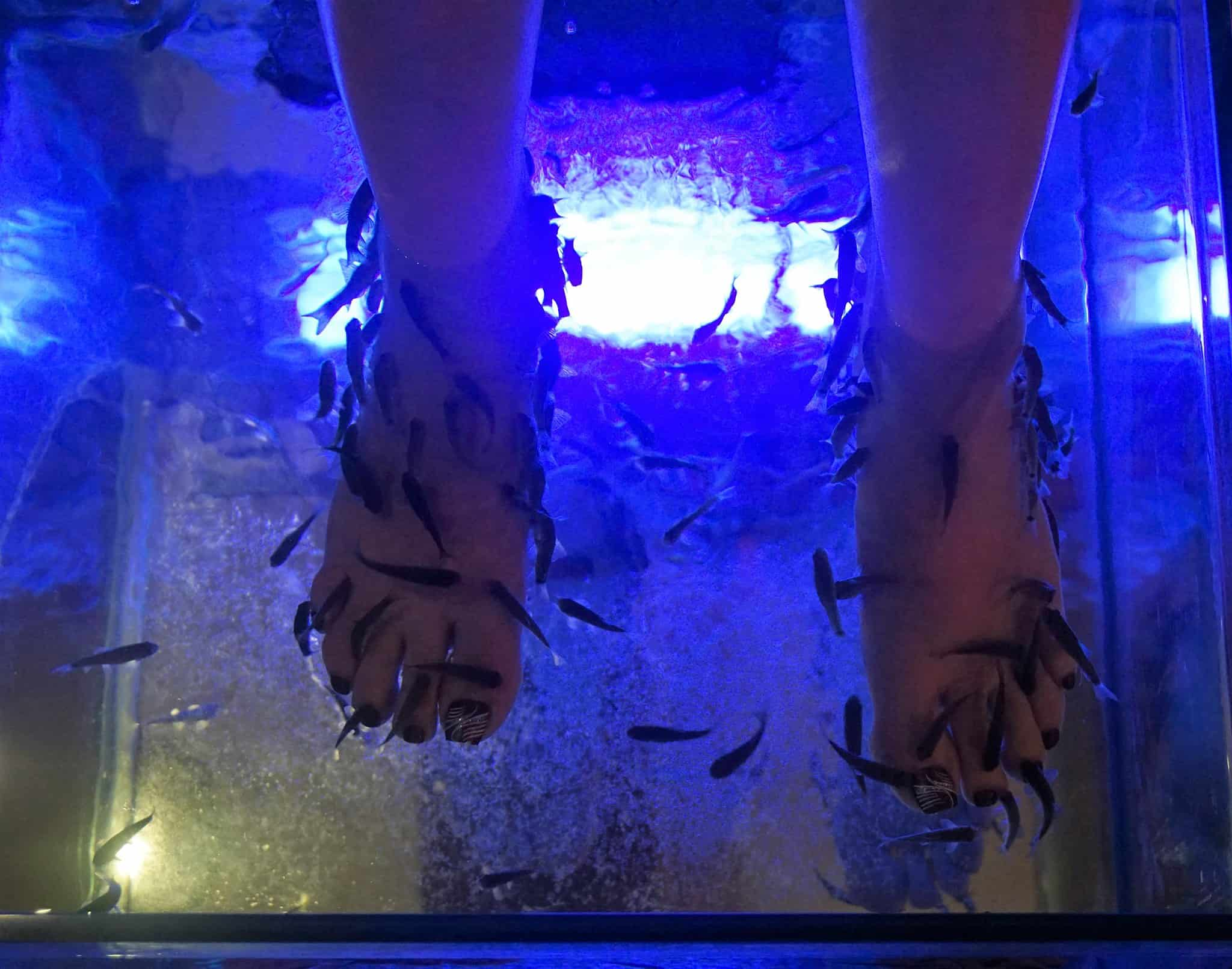 Fish-Spa-Playa-del-Carmen