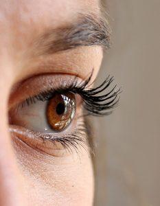 eye-eyelashes-eyelash