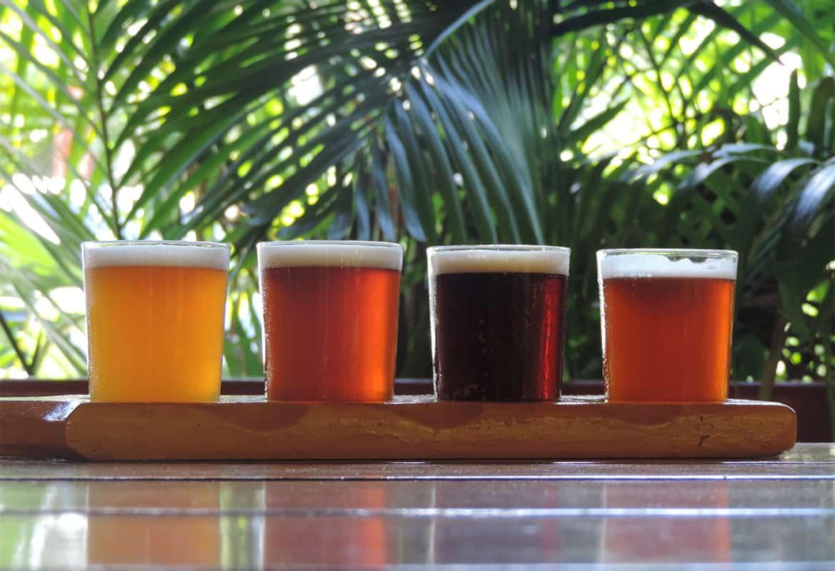 Grenada 13 Flight of West Indies craft beer