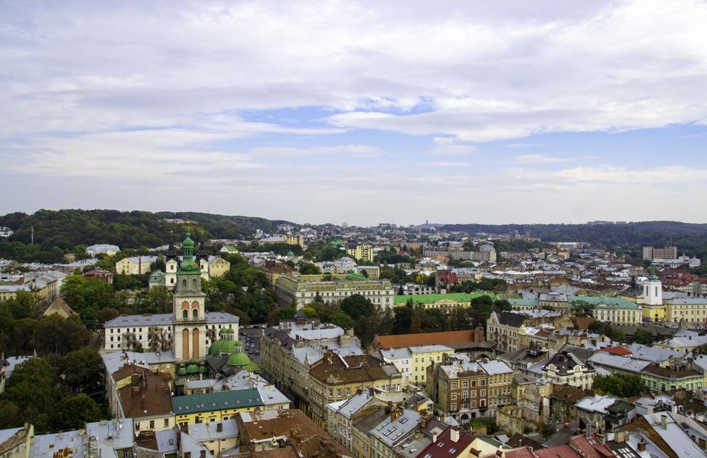 Lviv Tower View