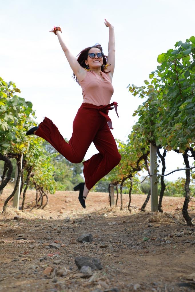 Nashik Vineyards - Grover Zampa Wine Tour