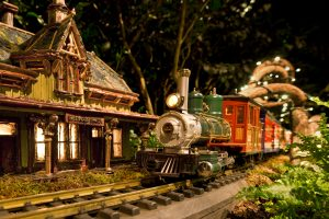 NYBG_TrainShow_Book_photo_by_Robert_Benson_Photography