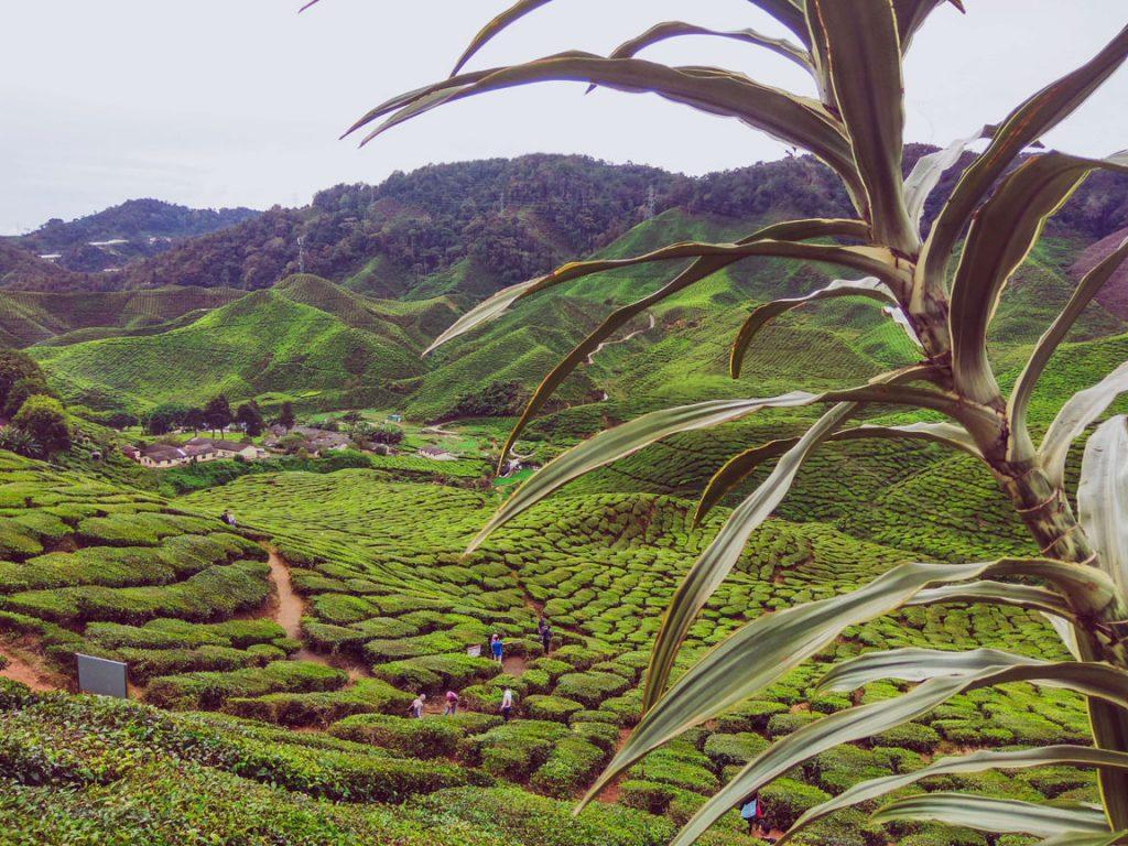 malaysia-trip-where-to-travel-in-malaysia