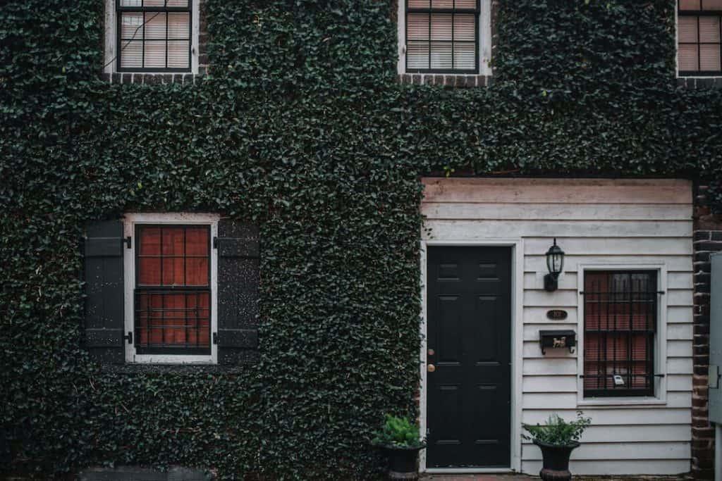 savannah-georgia-ivy-house
