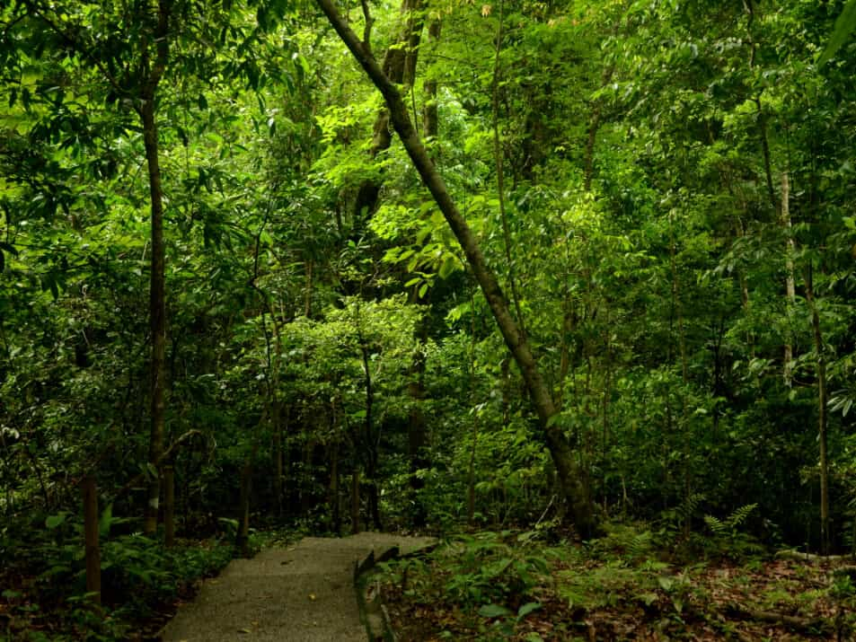 Nature-CostaRica Travel