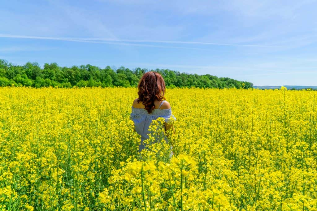 Is it safe to travel to Ukraine alone? A Solo Female Travel Guide for Ukraine