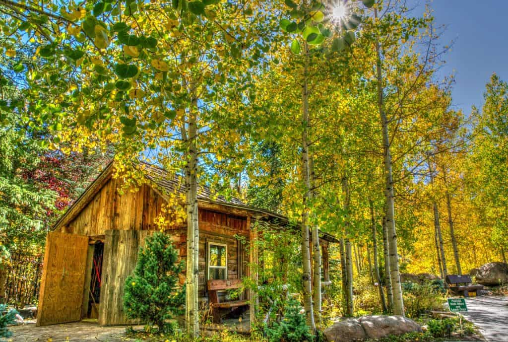 Hiking trips in USA: Best hiking trails in the US that are ideal in the Fall