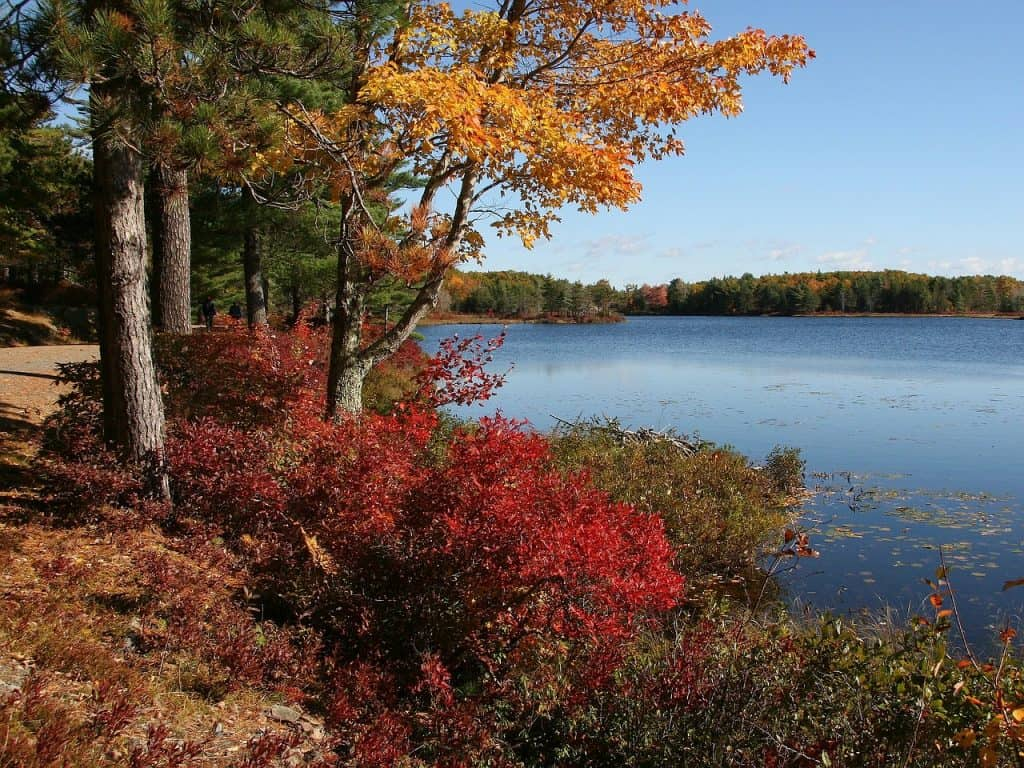 Jordan Pond Full Loop - Acadia National Park Maine