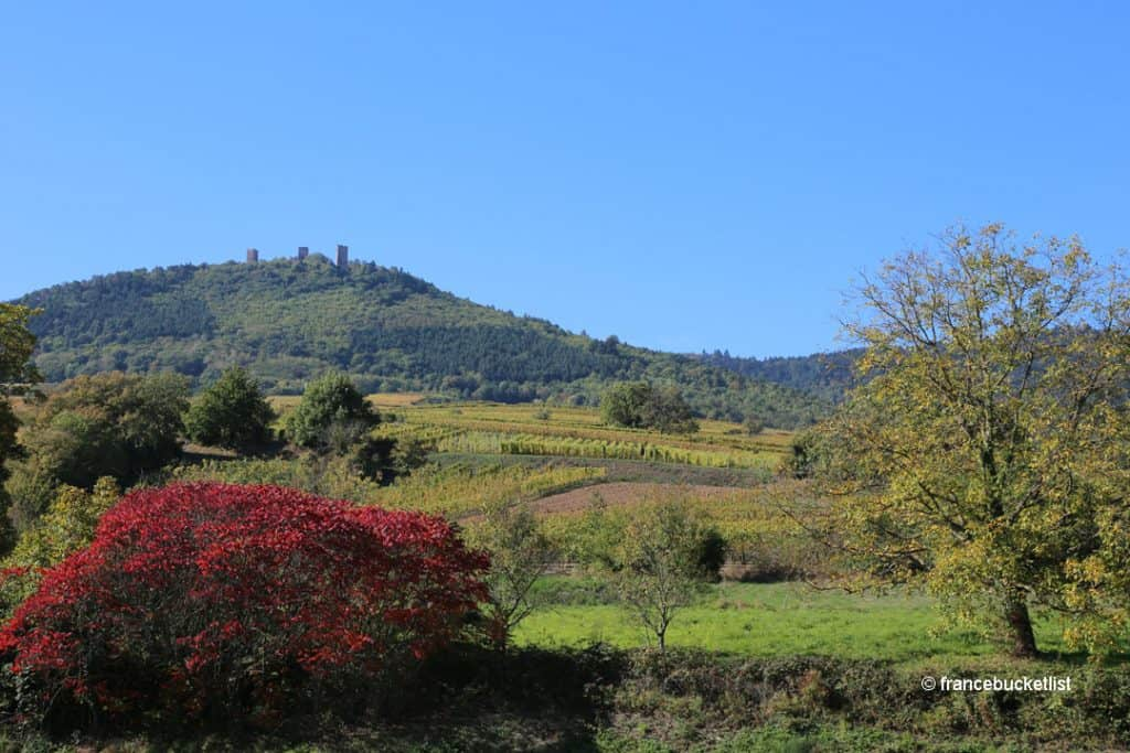 Alsace-Wine-Route France in October