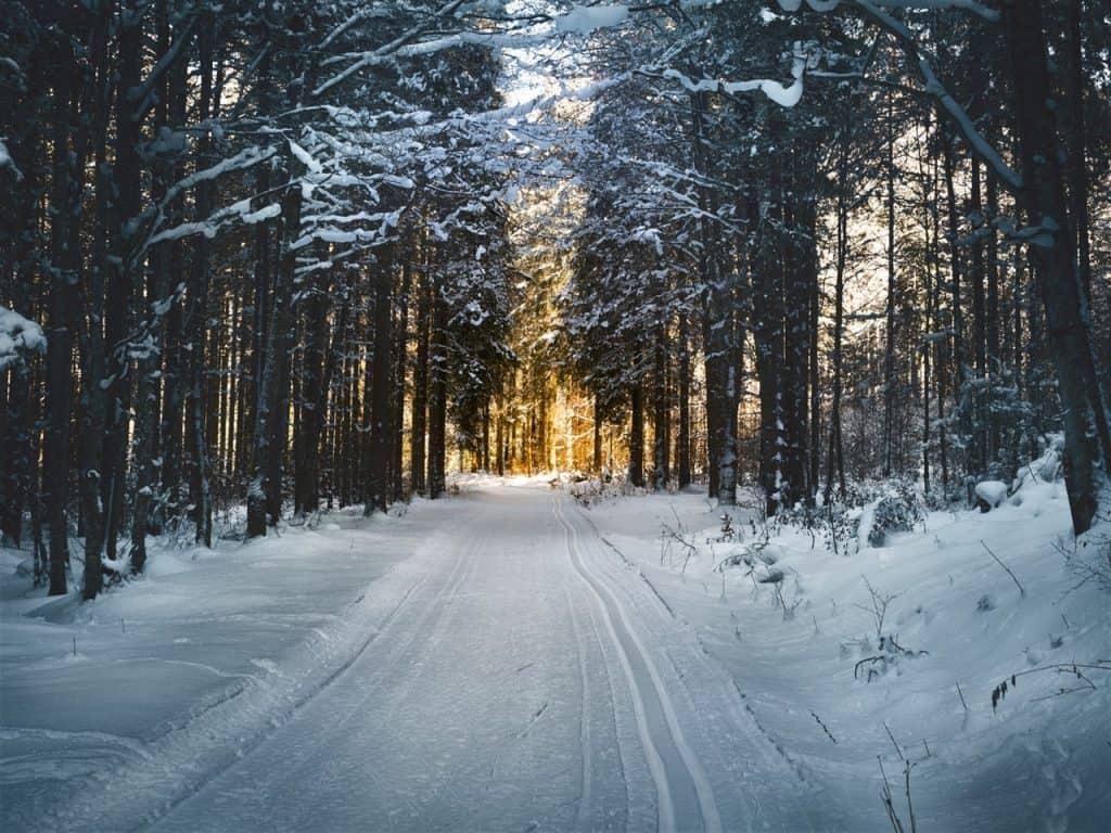 snow-winter-adventure-trail